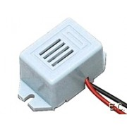 Zoomer 12V solid state